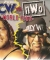 WCW vs. nWo: World Tour